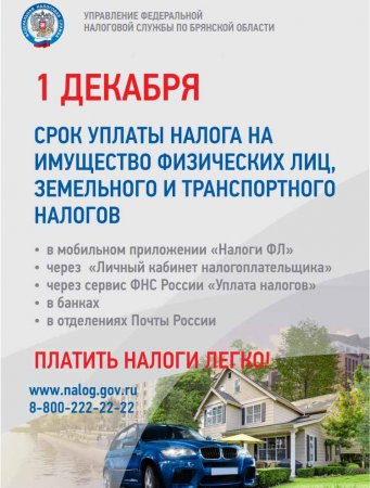 1 декабря срок уплаты налога на имущество физических лиц, земельного и транспортного налога